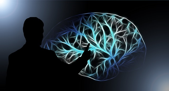 脳のプログラムを書き換えるということ